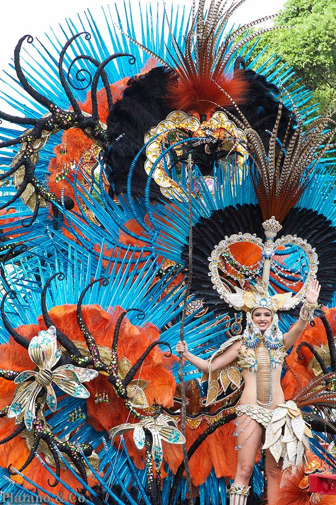 20140304-coso-del-martes-de-carnaval048