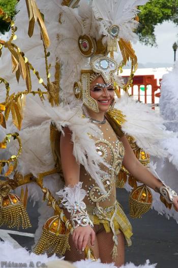 20140304-coso-del-martes-de-carnaval096
