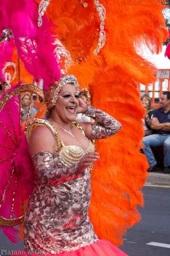 20140304-coso-del-martes-de-carnaval136